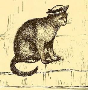 Cat in a sailor hat