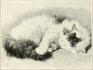 From St. Nicholas vol. 31 no. 12 / edited by Mary Mapes Dodge (1904)
