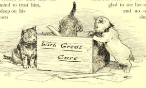 "kittens looking in a box labeled ""with great care"""