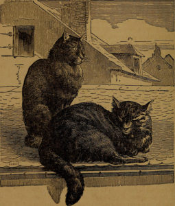 two striped cats sitting on a house roof