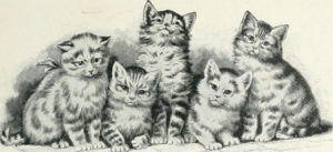drawing of five striped cats