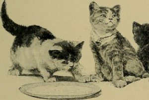 black and white drawing of two cats sitting near an empty plate