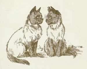 black and white drawing of two Siamese cats looking at each other