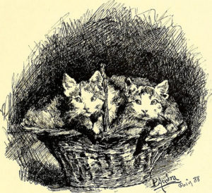 black and white drawing of two kittens in a wicker basket