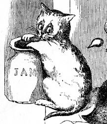 drawing of a pale cat with its paw in a jar labeled jam