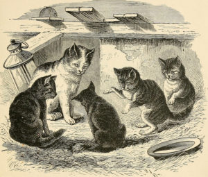 black and white drawing of a cat and four kittens sitting in a circle