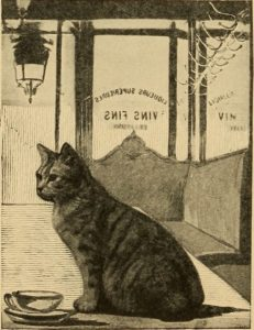 illustration of cat sitting in front of large tea cup