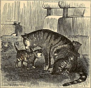woodblock illustration of a striped mother cat nuzzling two kittens